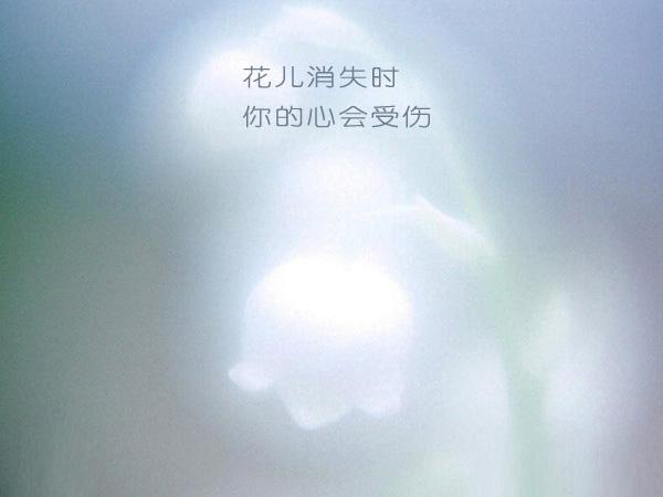 花开花落[28P] - AAA级私秘视频馆 - jb.cb.cb.cb 的博客